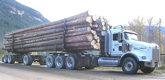 Anser Manufacturing Ltd - Anser Tri-Axle Long Logger